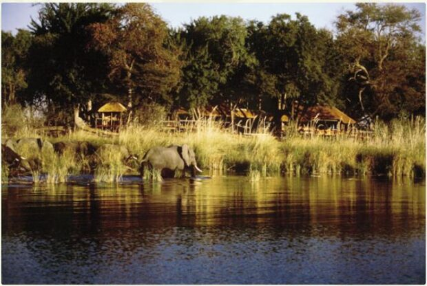 Botswana - Classic Wilderness Camps 2