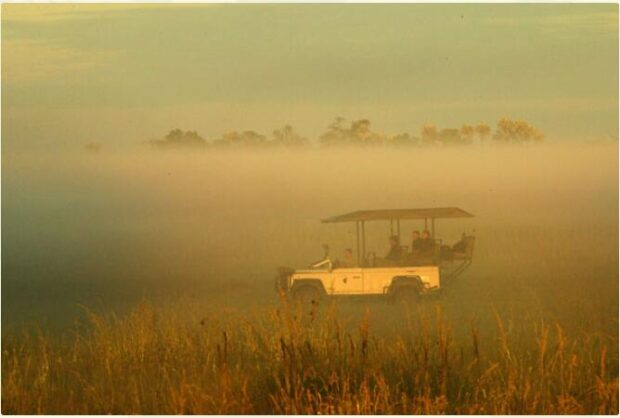 Botswana - Classic Wilderness Camps 3